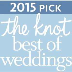 DJ Domenic Best of Weddings 2015