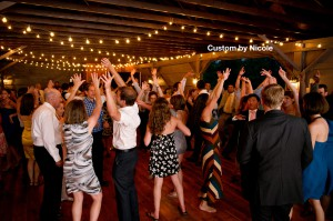 The Katterskill dance party music by DJ Domenic